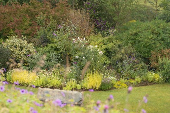 View from the Dumpy Bags down into the shrubbery/butterfly garden....sadly lacking butterflies so far this year. 3/08/11