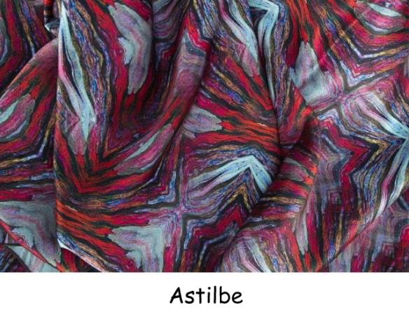Astilbe (2)