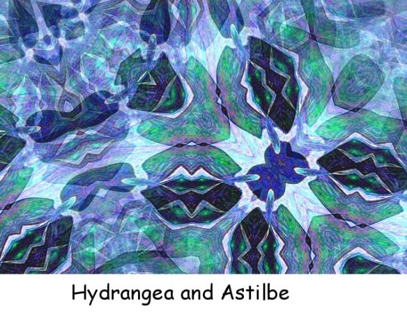 Hydrangea & Astilbe txt