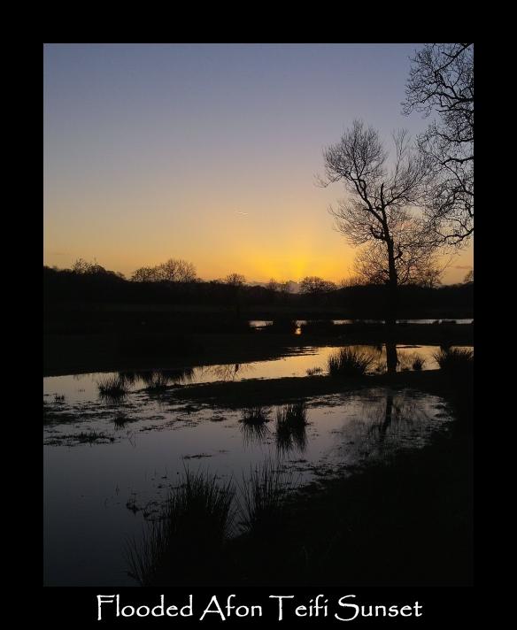 zz  Sunset 1