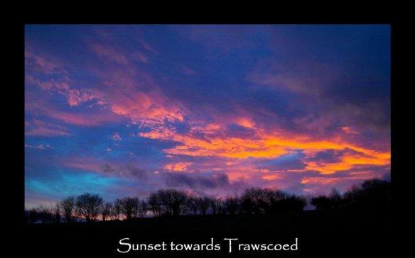 zz 11 sunset
