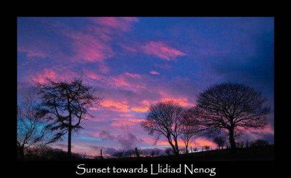 zz Sunset 11