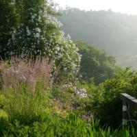 Garden Views-07-July 2018
